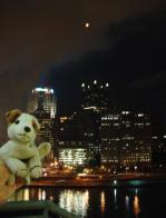 Wishbone and Pittsburgh skyline from