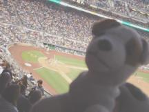 Wishbone not watching the game at PNC Park, Pittsburgh PA